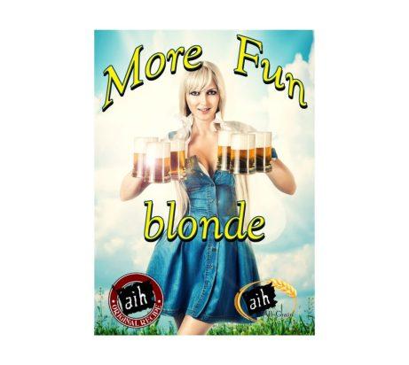 More Fun Blonde Recipe Kit