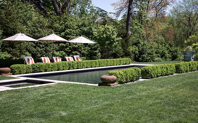 Private Pool Area Creating a private pool area with plants Private Pool Area Ideas