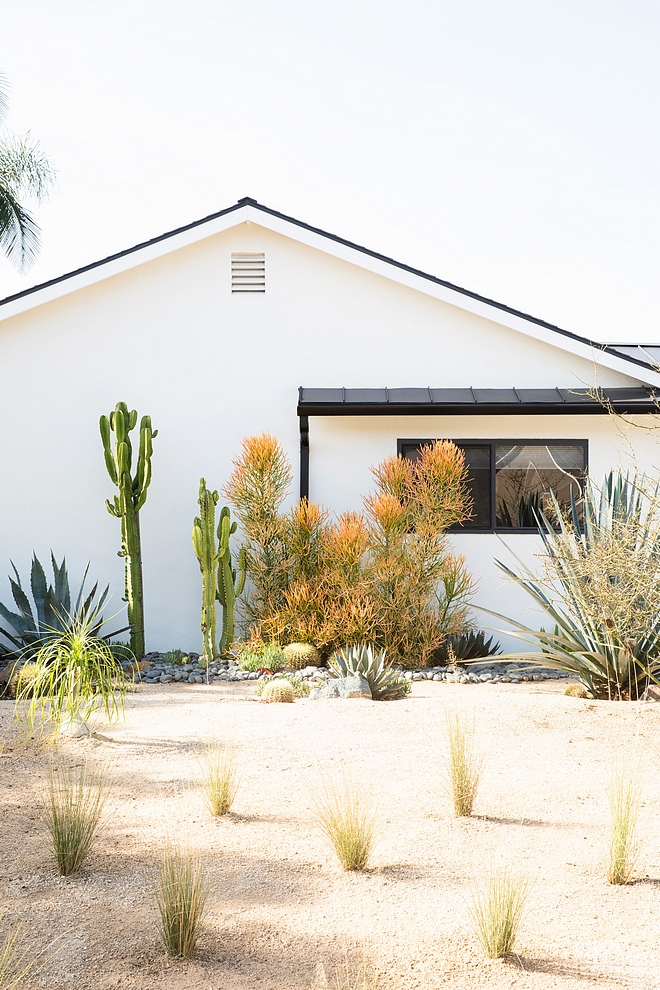 How to convert landscaping into a drought tolerant landscape Landscape How to convert landscaping into a drought tolerant landscape How to convert landscaping into a drought tolerant landscape #convertlandscaping #droughttolerantlandscape