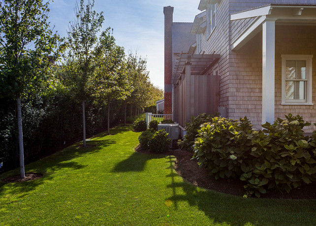 Landscaping Ideas. Trees by the fence are Sunset Maples. #Landscaping #Trees #SunsetMaples