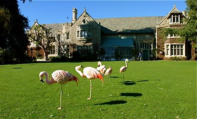 Cool or Fool Playboy Mansion  Home Bunch Interior Design Ideas