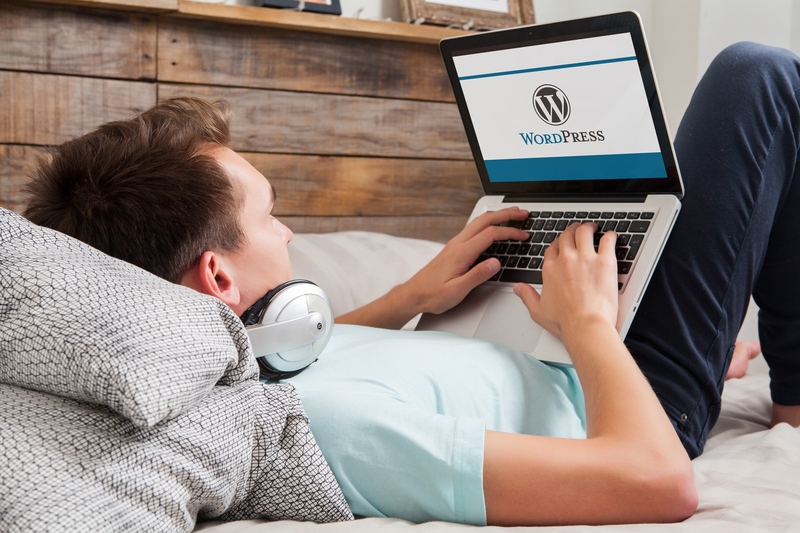 WordPress is a Website Developer's Dream
