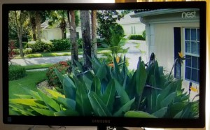 How to Watch Nest Cam on a TV Screen