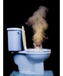 Toilet plume