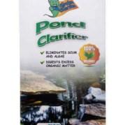 pond-clarifier