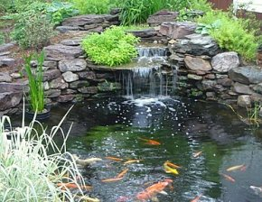 pond-with-stone-waterfall-and-koi