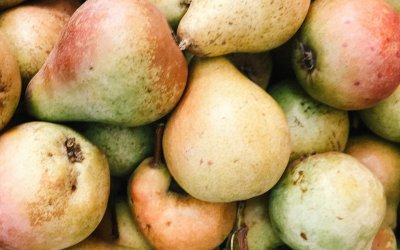 Perry Pear Hard Cider Recipe