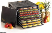 Excalibur 3926TB Electric Food Dehydrator Review - Why You Need It
