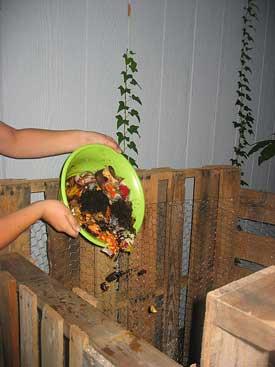 dump food scraps