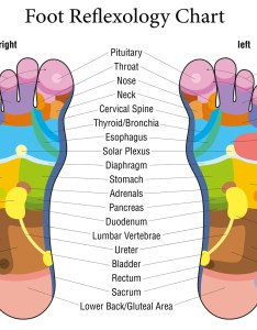 Using  reflexology or vita flex chart gives you visual mapping of where to apply the oils on feet treat particular organ also safe ways use essential rh homecuresthatwork