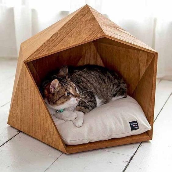 7x leuke en creatieve slaapplekken voor je kat  Homedeal