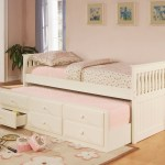 Modern Daybeds Home Decorator Shop