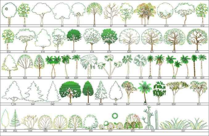 Tree Blocks-tree elevation 3