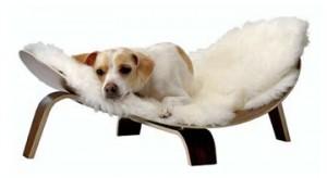 bentwooddogbed-300x164 furniture-2