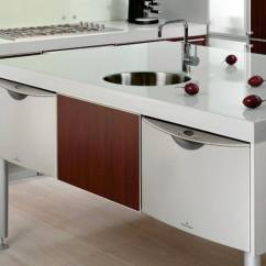 Sliding Drawers For Kitchen Cabinets Country Chair Cushions 18 Excellent Ideas Of Contemporary With Sink Built ...