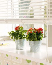 Modern Window Sill Ideas | Window Ledge Decorating Ideas