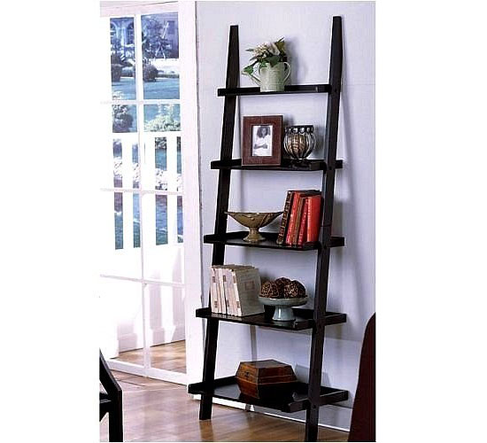 lean to bookshelf