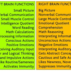 Left Side Brain Functions Diagram Muscles Arm Bones Vs Right Activities Lang 508 Socio