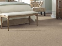 Hypoallergenic Carpet Brands - Carpet Vidalondon