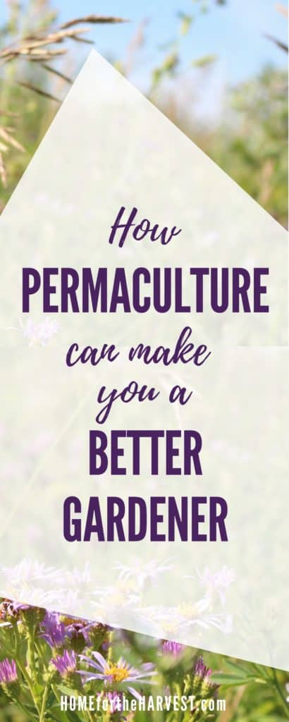 How Permaculture Can Make You a Better Gardener | Home for the Harvest
