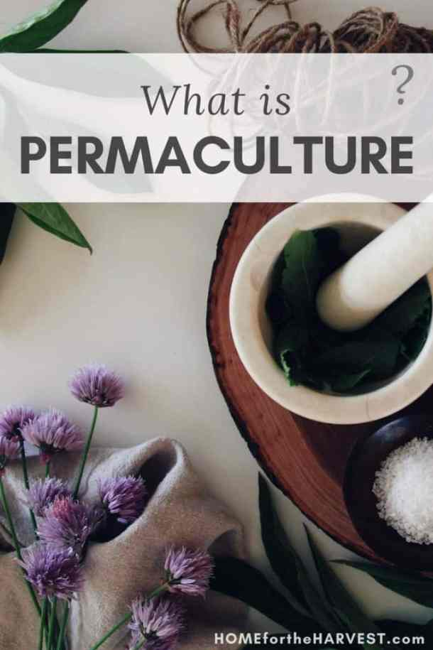 What is Permaculture? | Organic Gardening | Home for the Harvest