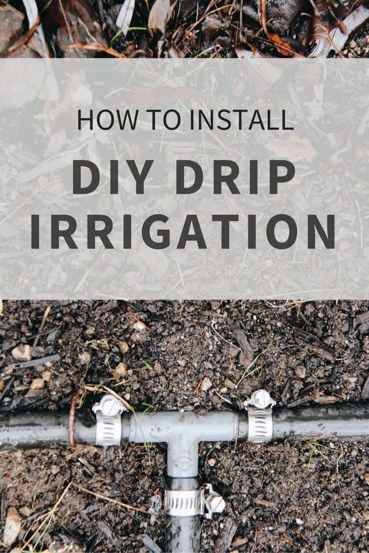 Diy drip irrigation systems how to install drip lines in for Home garden irrigation design