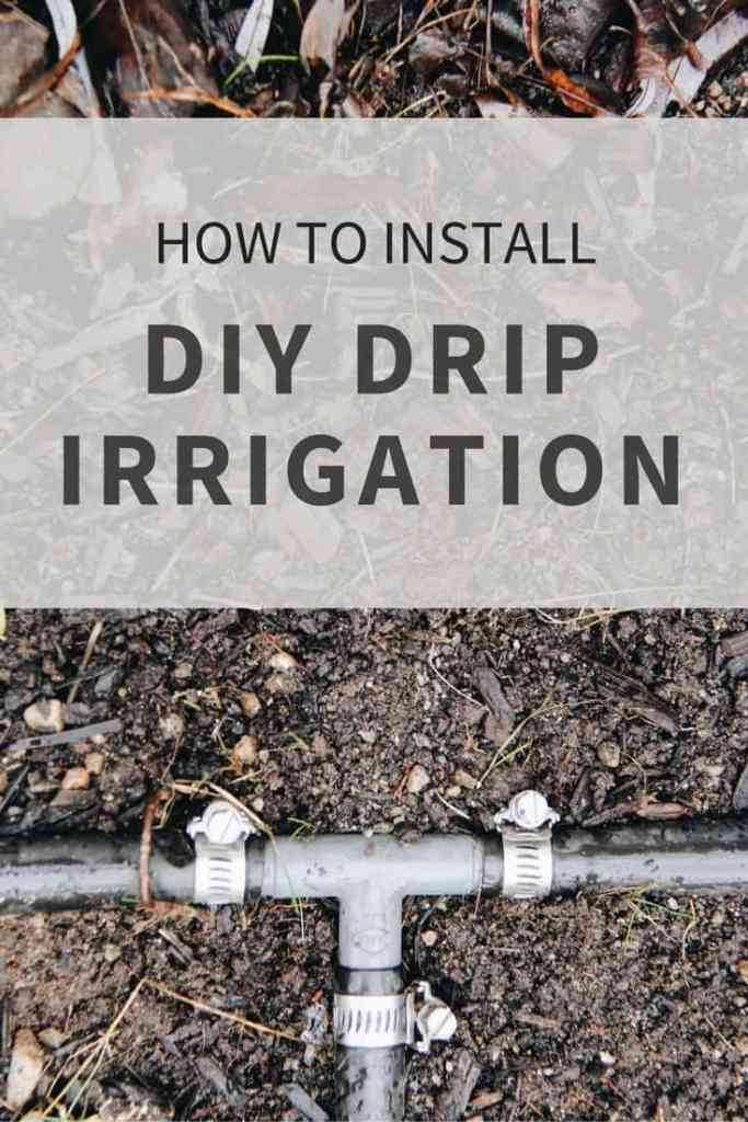 Diy drip irrigation systems how to install drip lines in for Home garden drip irrigation design