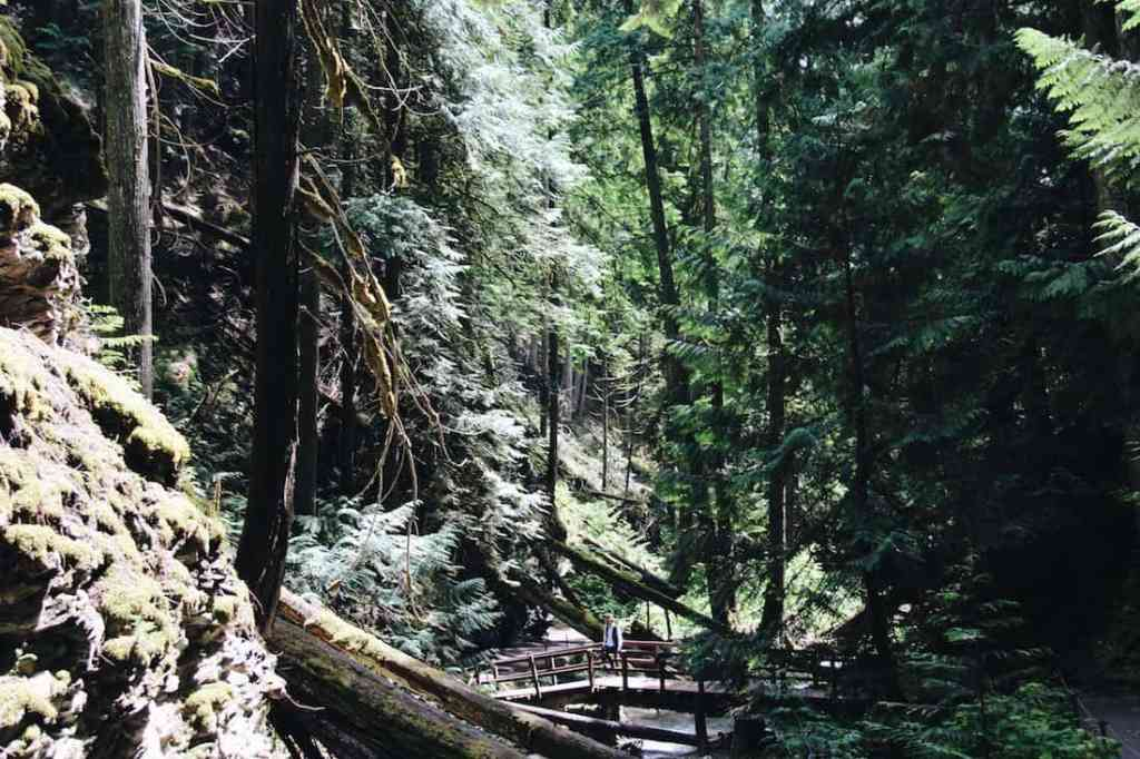Pacific Northwest Wilderness Hikes | Home for the Harvest Gardening Blog