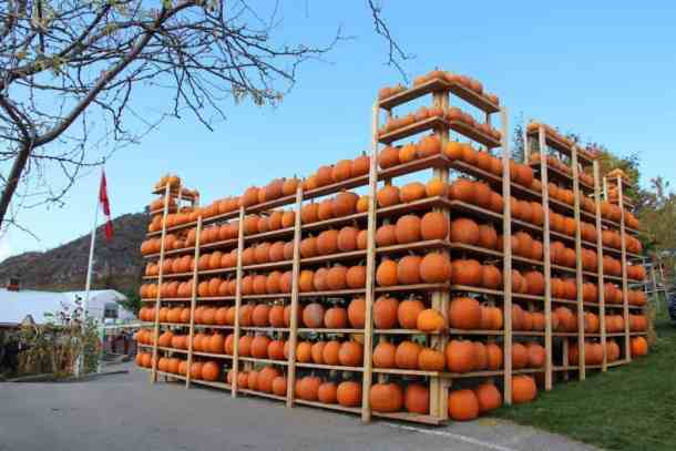 Okanagan Pumpkin Patch Pumpkin Castle | Home for the Harvest