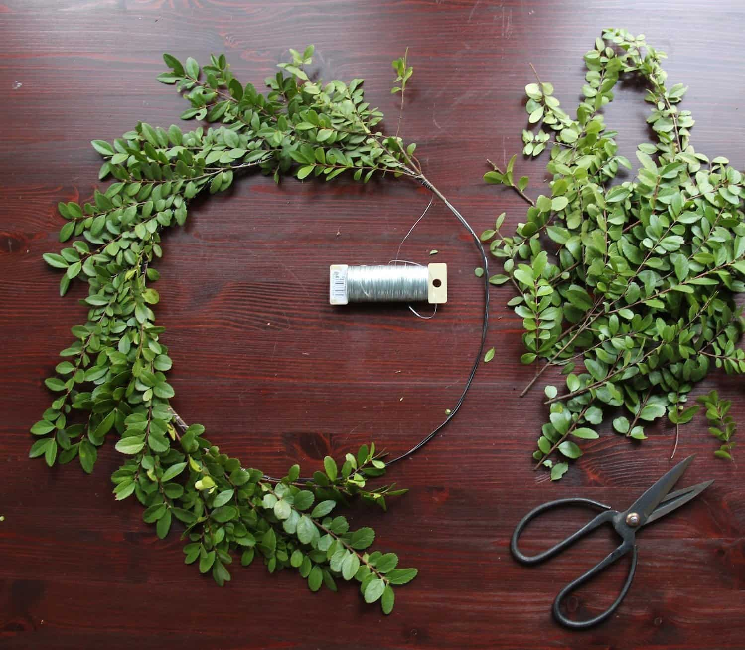 How to make a fresh christmas wreath - How To Make A Fresh Boxwood Wreath For Christmas Home For The Harvest