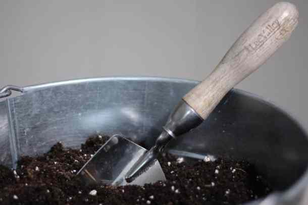 Seed-Starting Guide: How to Grow Seeds into Plants | Home for the Harvest