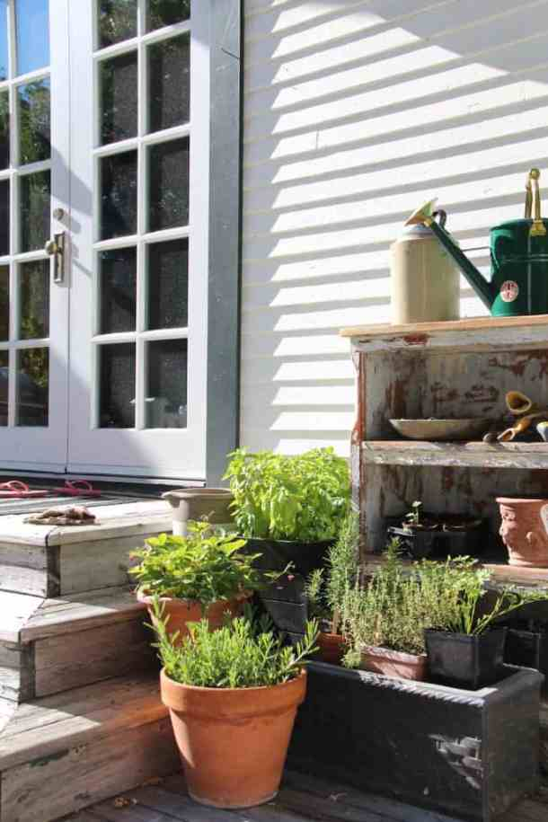 How to Start a Garden - Discovering Which Type of Garden is Right for You | Home for the Harvest