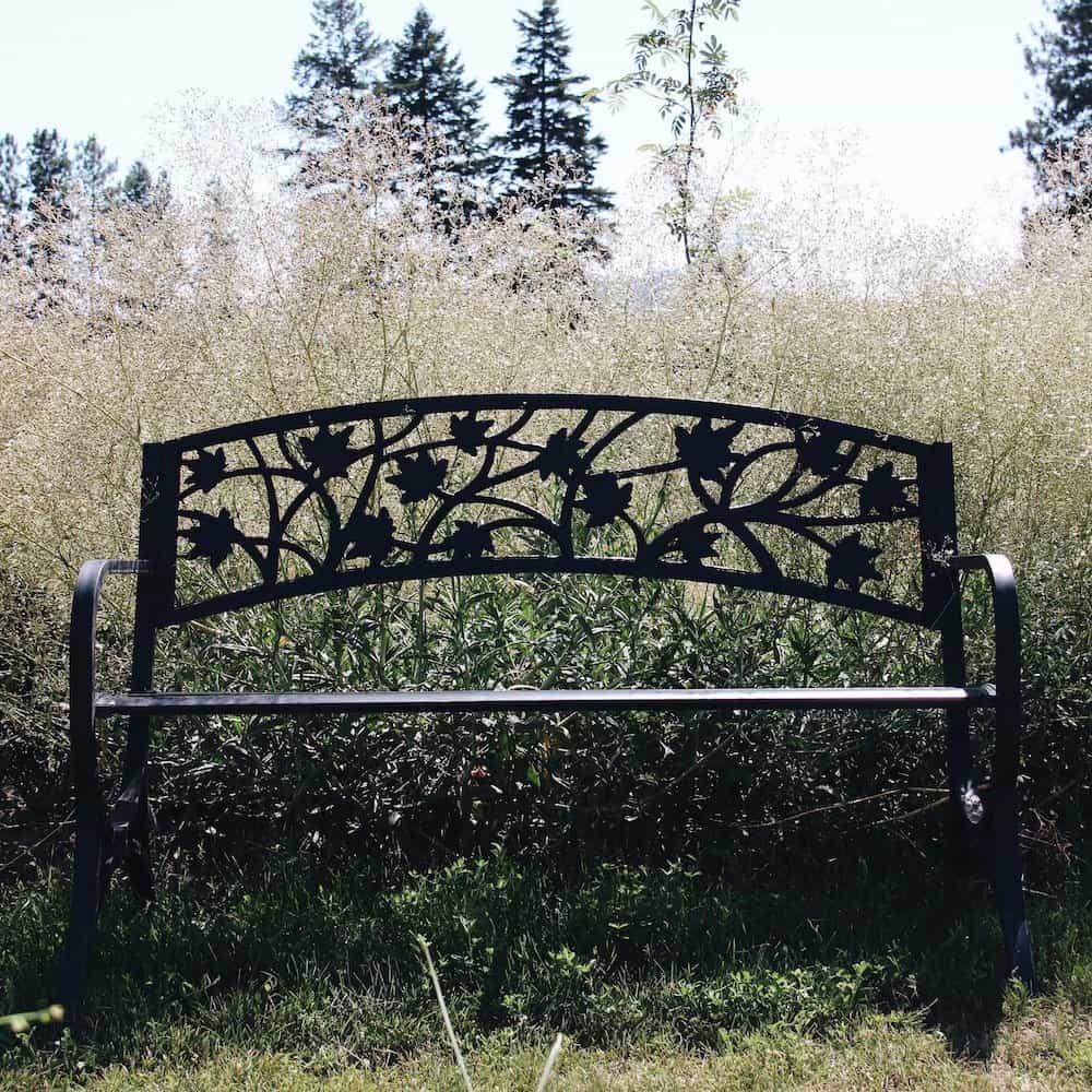 Garden Meditation | Home for the Harvest