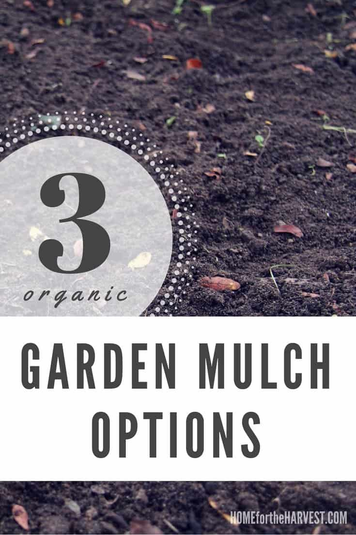 These organic mulches will keep your garden looking great while also keeping weeds down and retaining moisture | Home for the Harvest