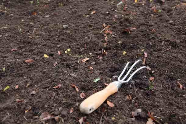 garden cultivator on garden soil showing gardening basics of soil preparation