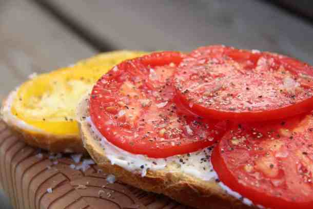 Tomatoes on toast are SO yummy if you've got fresh heirloom tomatoes! Tomato toast is my all-time favourite summer snack. It's the perfect garden-to-table meal during harvest season! | Home for the Harvest #heirloomtomatoes #heirloomtomato #tomatotoast #tomatoesontoast #gardentotable #homefortheharvest