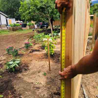 Privacy Fence: Using Wood Fence Panels to Create Privacy Fencing