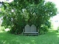 my shady seat