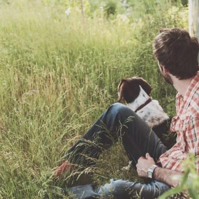 August Gardening: Ten Suggestions