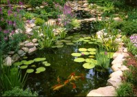 Ponds-Water-Features