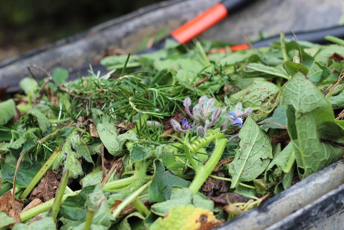Fragrant Garden Mulch