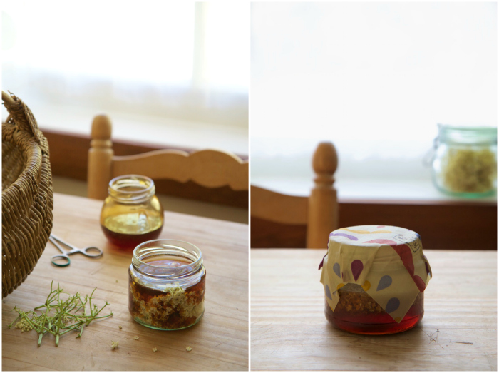 infuse honey Collage