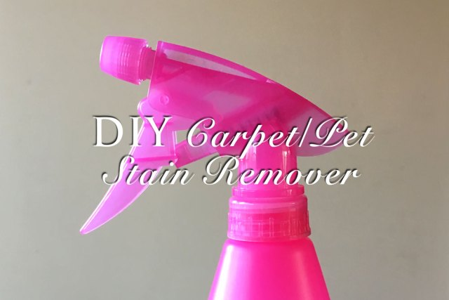 DIY Carpet/Pet Stain Remover