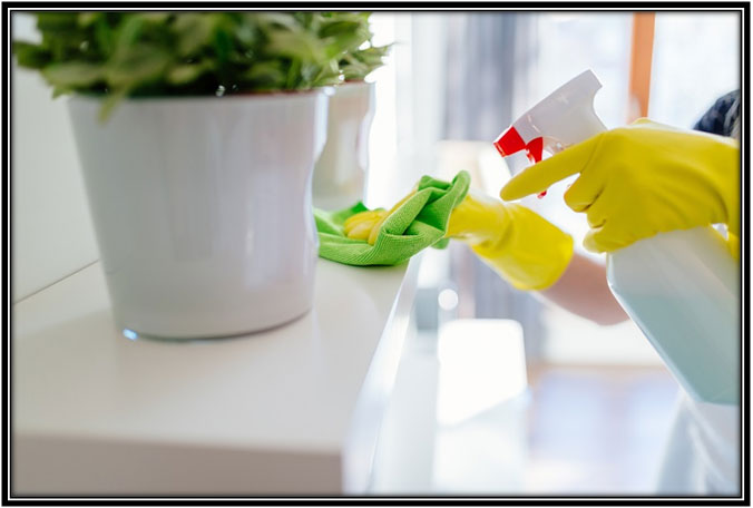 Standard house cleaning services