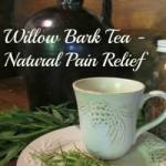 Willow Bark Tea-Natural Pain Relief: Homestead Blog Hop #27