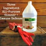 Homemade All-Purpose Cleaner +Immune Defense