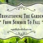 Transitioning the Garden from Summer to Fall-Homestead Blog Hop #36