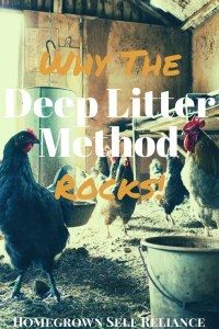 """The Deep Litter Method for chickens is the """"lazy way"""" of bedding for your chickens. Read this post to find out what it is, and why it's awesome!"""