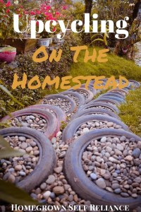 Upcycling is a great, eco-friendly way to save money on the homestead. Click here to get lots of ideas to upcycle on your homestead!