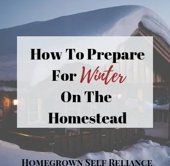 How to Prepare For Winter on the Homestead